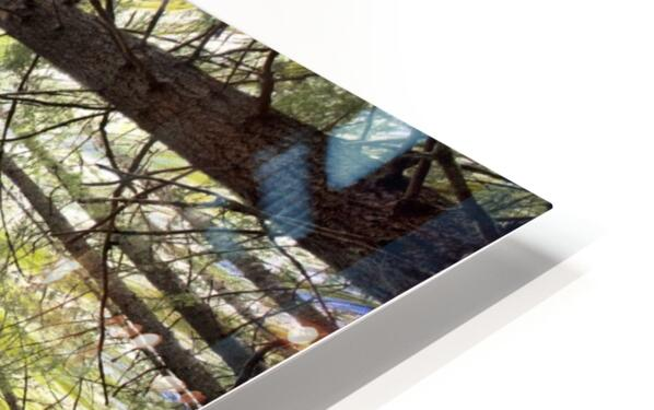 Forest Particles HD Sublimation Metal print