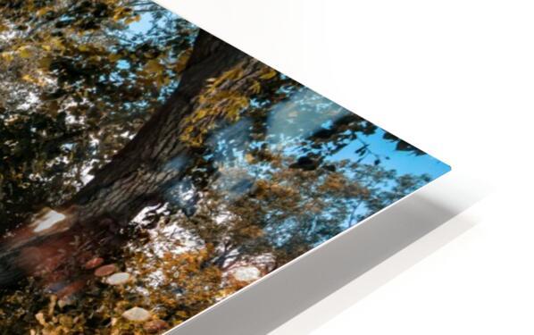 Monet style 1 HD Sublimation Metal print