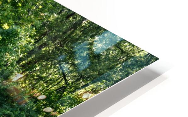 Monet style 2 HD Sublimation Metal print