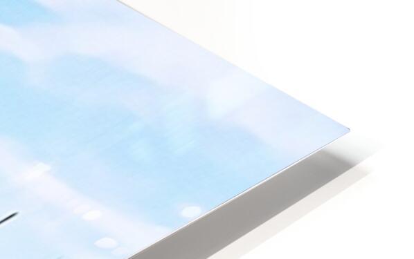 Venis p HD Sublimation Metal print