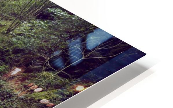 Torc waterfall in Killarney National Park HD Sublimation Metal print