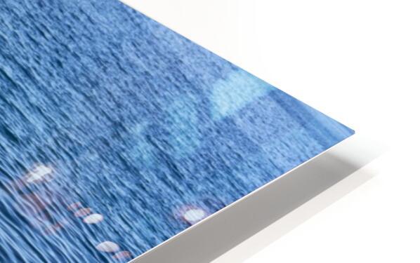Pool ladder on the shore of the slovenian adriatic coast Piran Slovenia HD Sublimation Metal print