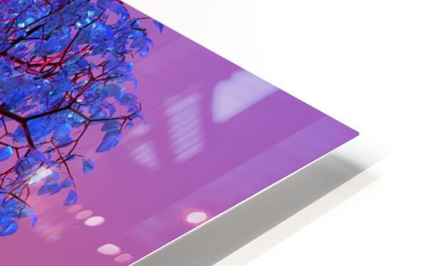 Tree Sunset HD Sublimation Metal print
