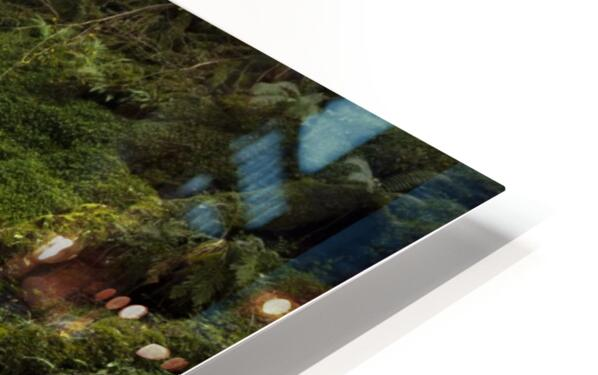 Water-Break-its-Neck landscape HD Sublimation Metal print