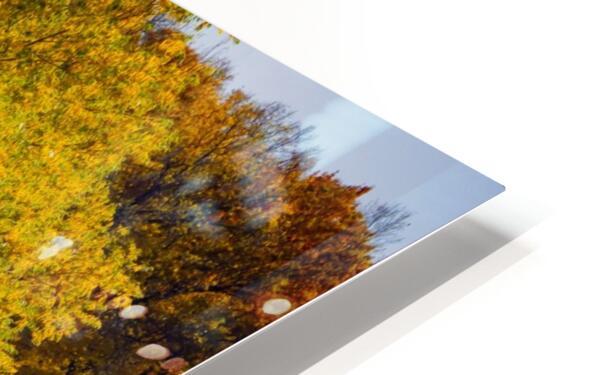 Arc de Treeomph HD Sublimation Metal print