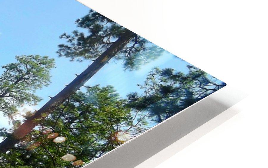 Deep In HD Sublimation Metal print