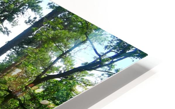 Deeper In HD Sublimation Metal print