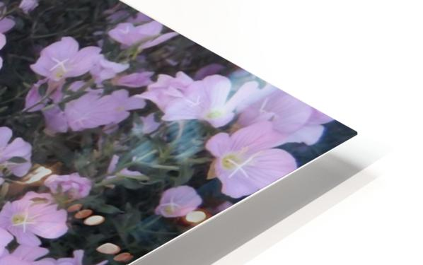 Flower Garden HD Sublimation Metal print