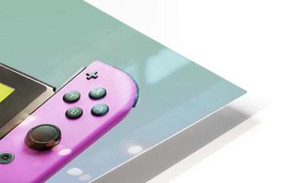 Nintendo Switch Green Pink HD Sublimation Metal print