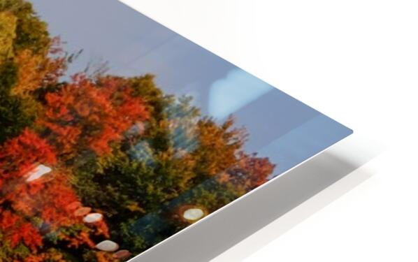 Fall in love with fall HD Sublimation Metal print
