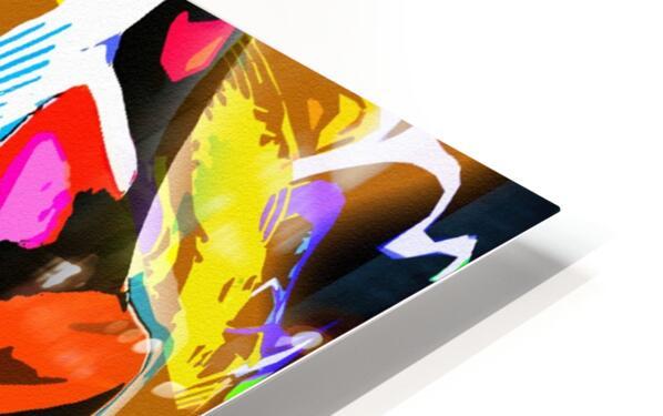 D M T HD Sublimation Metal print