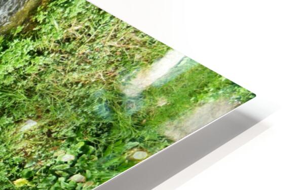 green4 HD Sublimation Metal print