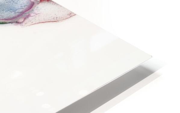 Uplift HD Sublimation Metal print