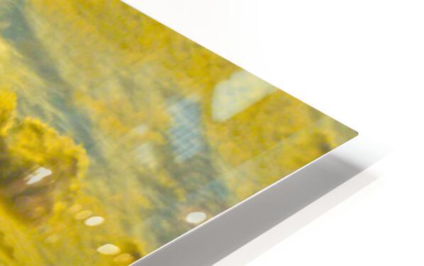 Surge HD Sublimation Metal print