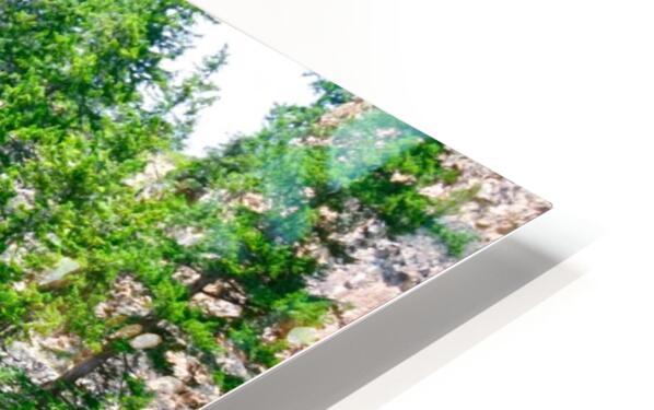 Wild Colorado HD Sublimation Metal print