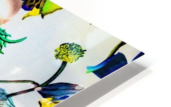 LA FEMME OISEAU  HD Sublimation Metal print