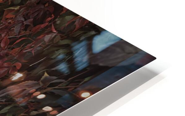 Secret Garden HD Sublimation Metal print