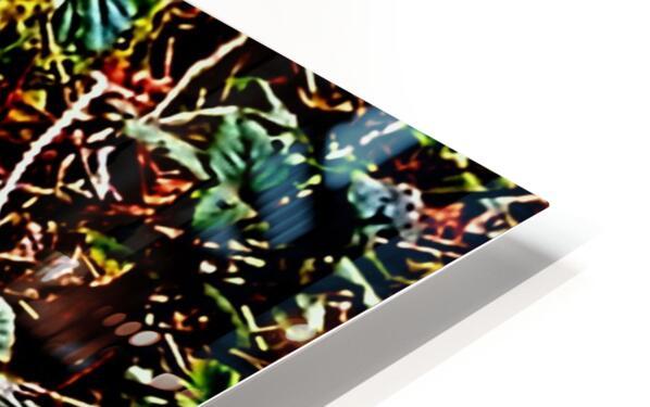 Tiny World 3 of 8 HD Sublimation Metal print