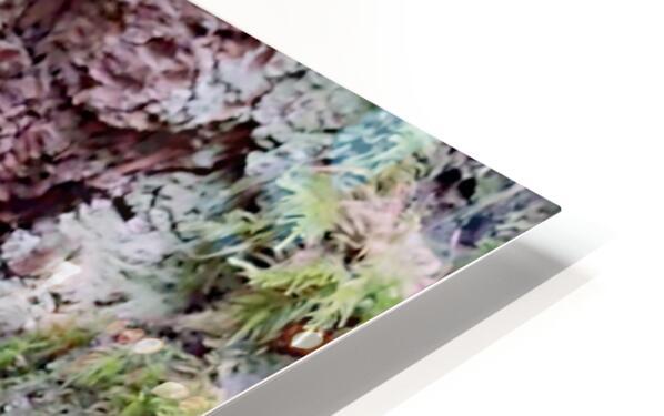 Tiny World 8 of 8 HD Sublimation Metal print