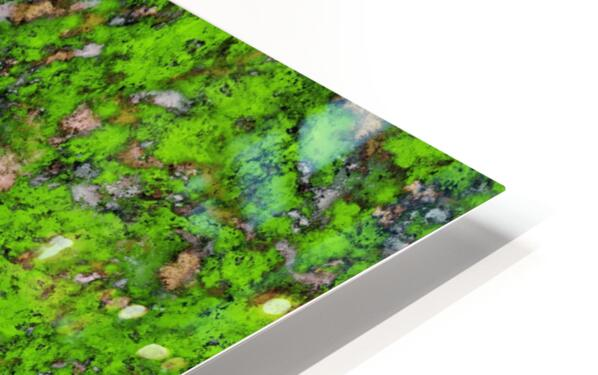 Big mossy wall HD Sublimation Metal print