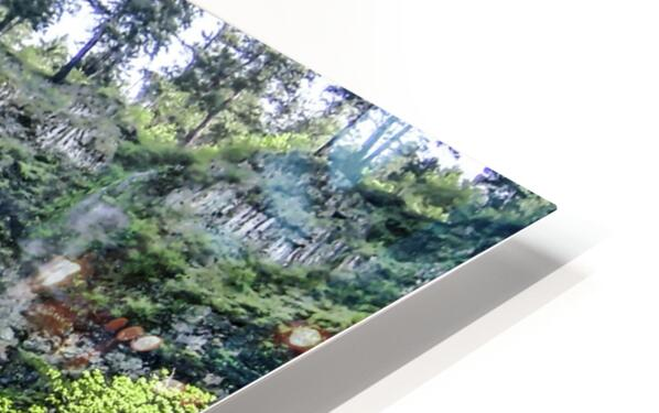 I Dreamed of Waterfalls HD Sublimation Metal print