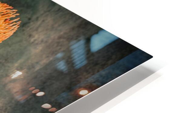 Zen 2 HD Sublimation Metal print