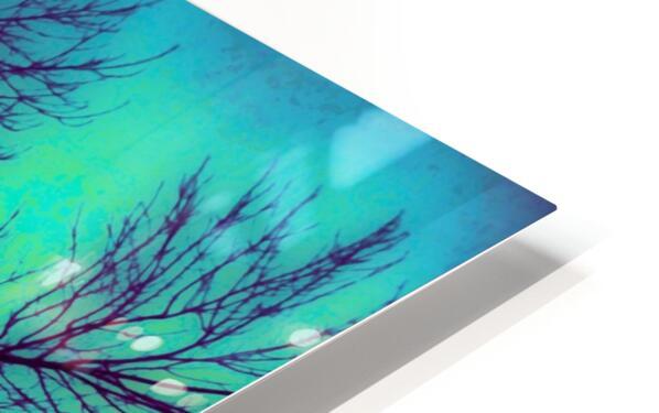 Portal  4  HD Sublimation Metal print