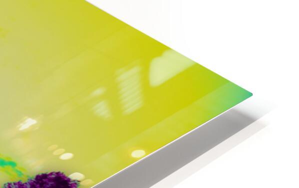 Portal  29  HD Sublimation Metal print