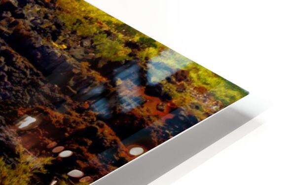 Rugged Kauai HD Sublimation Metal print