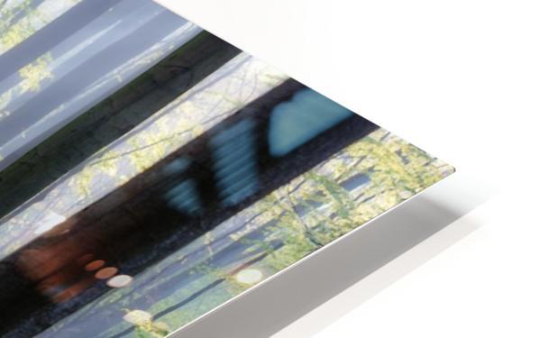 Bluebells HD Sublimation Metal print