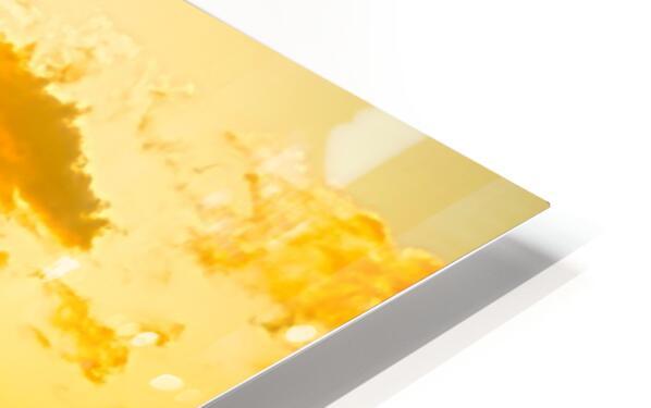 Golden Moment HD Sublimation Metal print