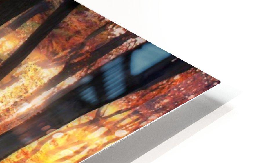 Autumn Woodland Sunrise HD Sublimation Metal print