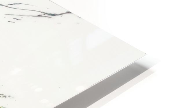 Chameleon HD Sublimation Metal print