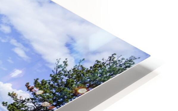 Spring at Lake Tahoe 5 of 7 HD Sublimation Metal print