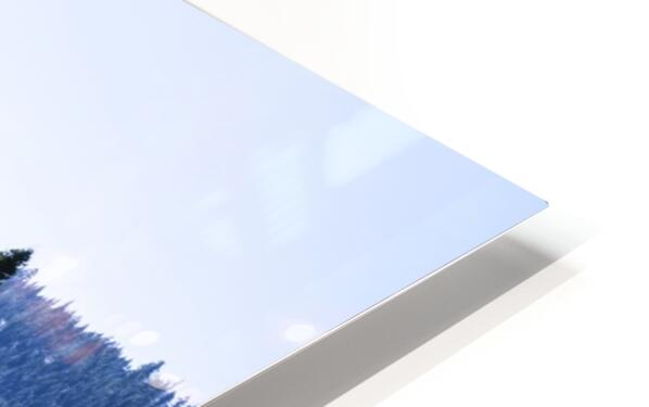 Secret View HD Sublimation Metal print