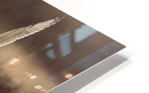 Wesley Allen Shaw 02250 HD Sublimation Metal print
