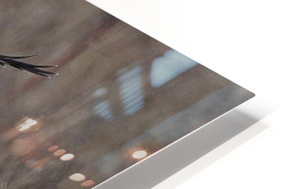 Wesley Allen Shaw 02102 1609734999.9044 HD Sublimation Metal print