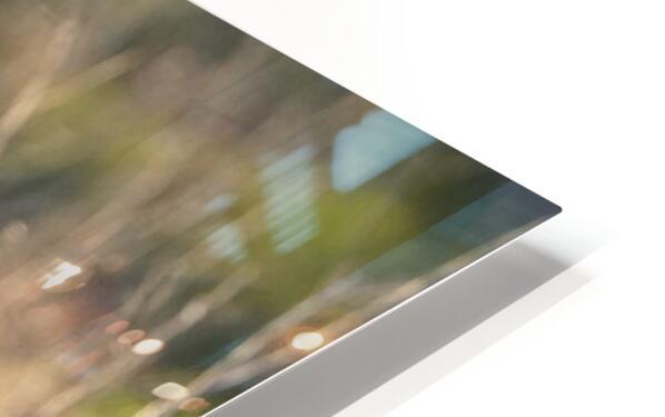Wesley Allen Shaw 08787 HD Sublimation Metal print
