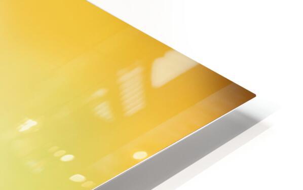 MG 2275 2 HD Sublimation Metal print