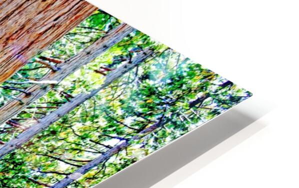 The Tree HD Sublimation Metal print