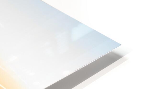 20181211 IMG 2903 HD Sublimation Metal print
