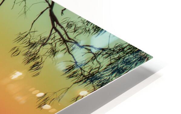20190101 DSC 0114 2 HD Sublimation Metal print