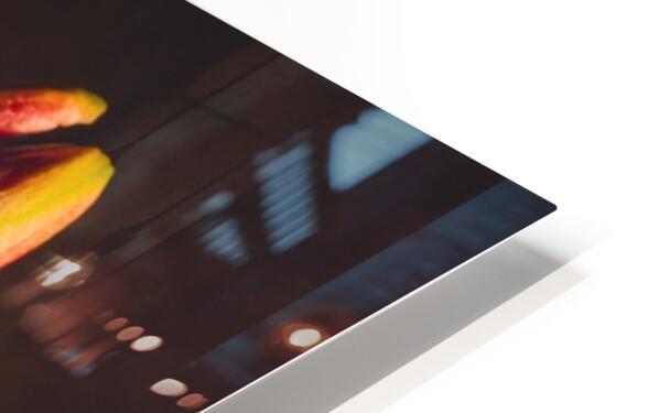 Etude Zen 3g HD Sublimation Metal print