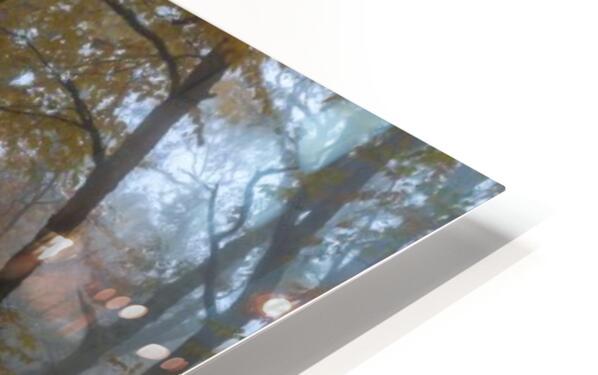 Treeline apmi 1867 HD Sublimation Metal print