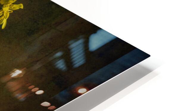 Etude Zen 7c HD Sublimation Metal print