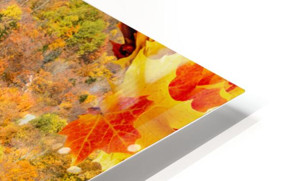 Abstract - Autumn II HD Sublimation Metal print