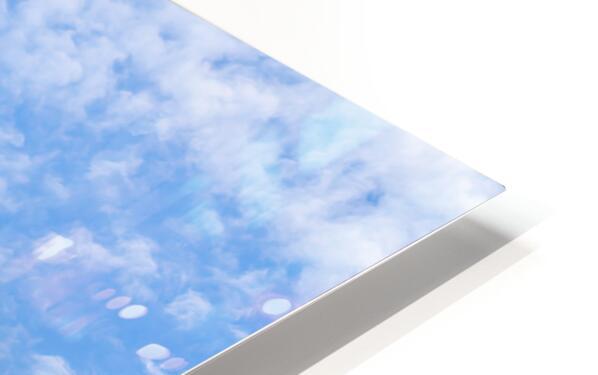 Panchito B25 In Flight HD Sublimation Metal print