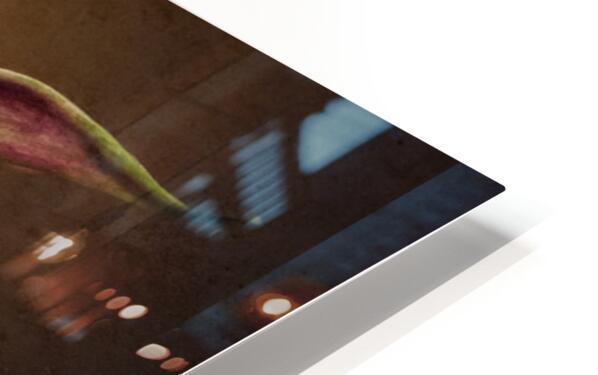 Etude Zen 8 b HD Sublimation Metal print