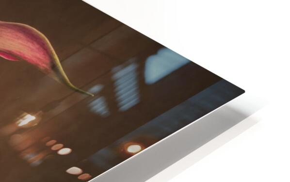 Etude Zen 8 d  HD Sublimation Metal print
