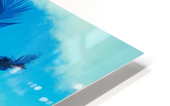 palm color 6 HD Sublimation Metal print